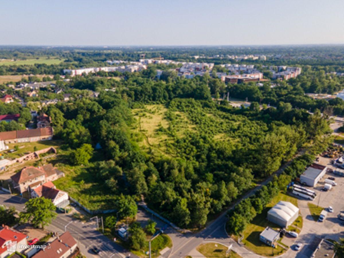 Zdjęcie Swojczycki Park Czarna Woda fot. Jakub Zazula