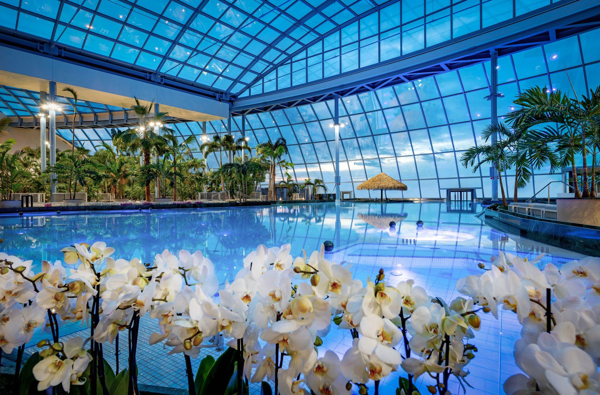 Park of Poland. Nieopodal Warszawy otwierają największy aquapark w Europie