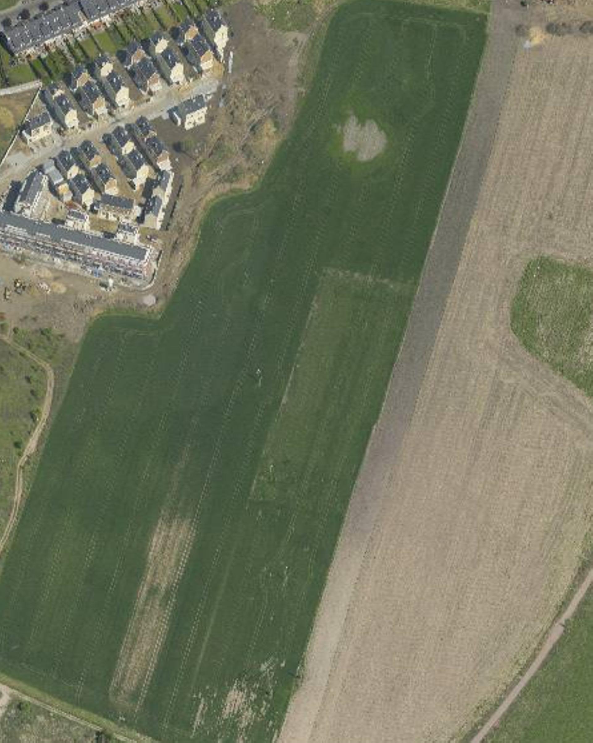 Wrocław: Deweloperzy szykują nowe osiedla na Wojszycach. Jedno ma zająć kilka hektarów